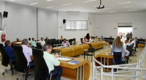 Câmara de Araxá aprova Lei Orçamentária Anual para 2014