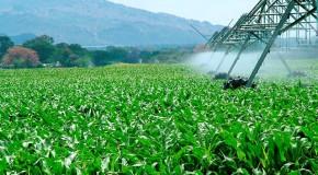 Lideranças do Noroeste e do Alto Paranaíba discutem futuro da agricultura durante evento em Unaí