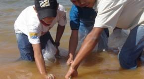 Cemig divulga balanço do peixamento em rios de Minas Gerais