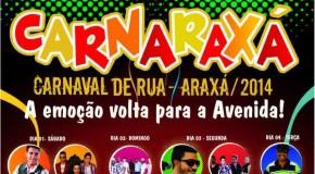 Conheça os temas que as Escolas de Samba de Araxá vão levar pra avenida