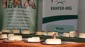 Etapa Regional do Concurso Queijo Minas Artesanal acontece nessa sexta