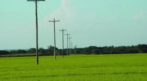 Cemig e Emater-MG firmam parceria visando beneficiar consumidor rural