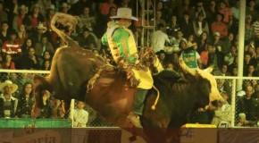 Rodeio e show sertanejo universitário encerram Fenamilho 2014