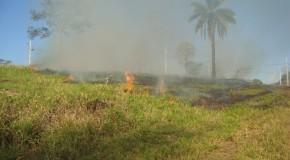 Registro de queimadas urbanas em Araxá, em 2014, já é maior que em 2013