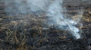 Mais um é preso por atear fogo em vegetação às margens de rodovias que cortam Araxá
