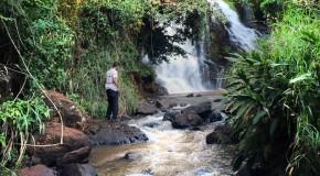 Primeira unidade de conservação integral do Triângulo Mineiro é aberta para visitação pública
