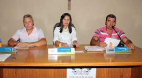 Câmara de Tapira aprova a criação do Casamento Comunitário