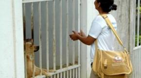 Prefeitura de Patos reajusta salários de Agentes de Combate às Endemia