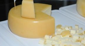 Produtores de queijo buscam indicação geográfica para o selo da marca Araxá