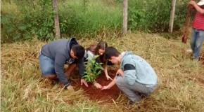 Plantio de mudas é promovido pela Prefeitura de Sacramento