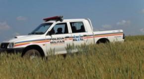 Homens furtam armas em fazenda no município de Tapira