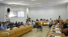 Audiência Pública na Câmara aborda situação dos animais de rua em Araxá