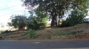Prefeitura de Patos realiza limpeza de praça com nascente no bairro Caramuru