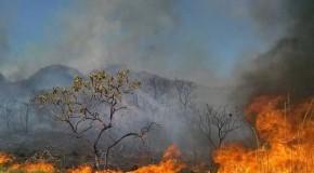 Governo de MG decreta situação de emergência para agilizar combate às queimadas