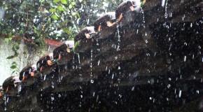 Araxá e Uberlândia entre as cidades com maior quantidade de chuvas nos últimos dias