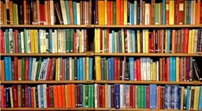 Edital da Secretaria de Cultura seleciona propostas para criação de bibliotecas em municípios mineiros