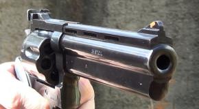 Homem é preso por porte ilegal de arma de fogo em Perdizes