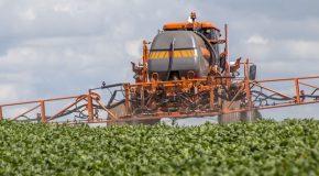 Agricultura discute desafios da certificação agropecuária e agroindustrial