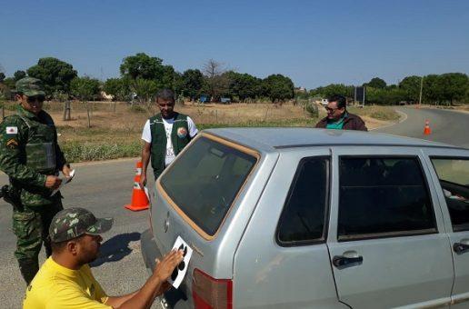 IEF mobiliza equipes de parques no combate a atropelamentos de animais silvestres