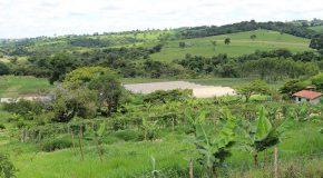 Epamig desenvolve ferramenta para auxiliar gestão sustentável de propriedades rurais