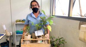 Prefeitura de Araxá lança o projeto Fruta no Campo