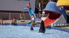 Atividades do Centro Esportivo de Tapira retomam atividades