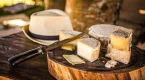 Governo apresenta avanços da cadeia produtiva dos queijos artesanais na ALMG