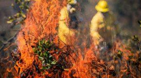 Web-rádio: Força-tarefa realiza fiscalização ostensiva para combate à incêndios florestais