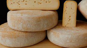 Araxá sediará concurso que vai apontar os melhores queijos do mundo